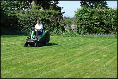 Photo of a sit down mower on Hedges and Lawn Care page