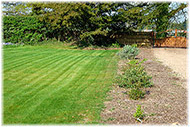 Picture of fresh turf on Lawns and turfing page