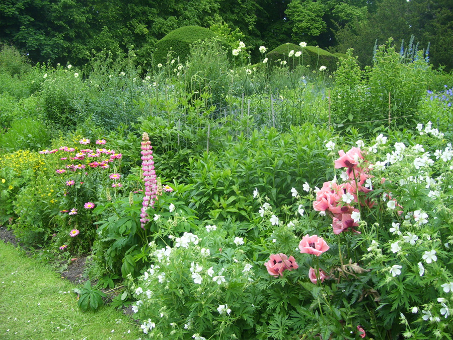 Photo of a perennial border for Gardening Links page