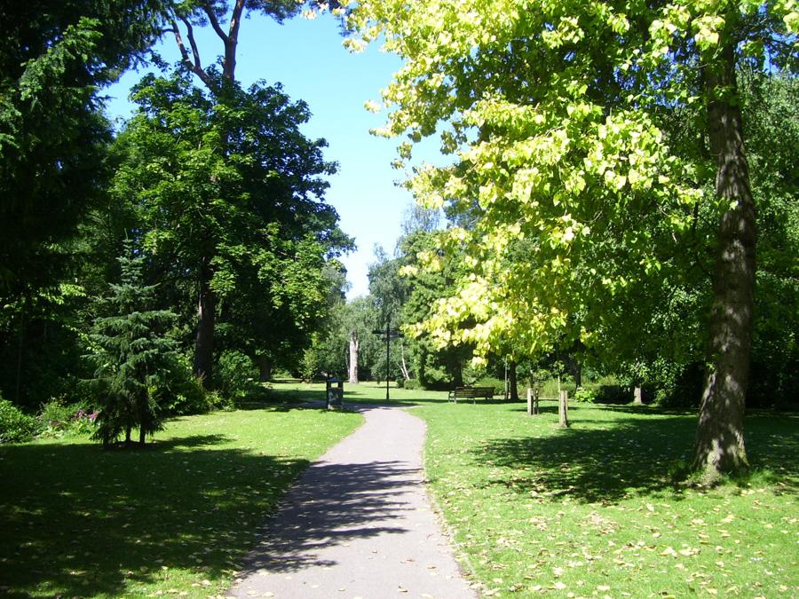 Trees on about us Harvey Probert
